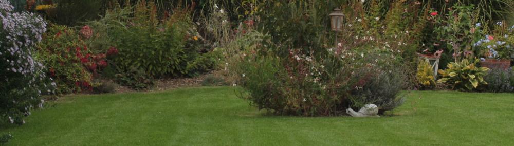 entretien pelouse et massif